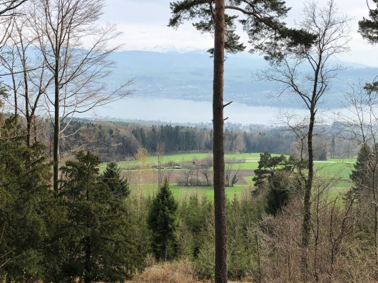 Another view of the Swiss mountains.